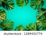 tropical leaves monstera on... | Shutterstock . vector #1289431774