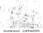 texture black and white old... | Shutterstock . vector #1289460394