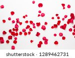 Stock photo valentine s day rose flowers petals on white background valentines day background flat lay top 1289462731