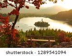 close up  picturesque shot of... | Shutterstock . vector #1289541094