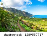 landscape with north tenerife... | Shutterstock . vector #1289557717