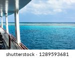 reef and lighthouse of sanganeb ... | Shutterstock . vector #1289593681