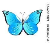 beautiful butterflies  blue... | Shutterstock . vector #1289709997