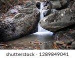 beautiful forest waterfall... | Shutterstock . vector #1289849041