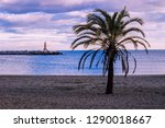 lighthouse. palma on the beach... | Shutterstock . vector #1290018667
