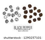 spice collection  black pepper... | Shutterstock .eps vector #1290257101