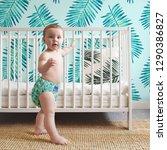 bambino mio rainforest... | Shutterstock . vector #1290386827