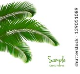 Background With Palm Leaves....