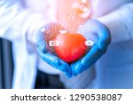 cardiologist professional... | Shutterstock . vector #1290538087