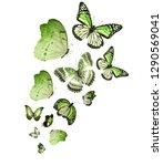 flock of  butterflies on white | Shutterstock . vector #1290569041