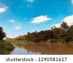 ping river  chiangmai | Shutterstock . vector #1290581617