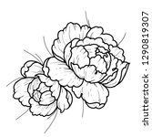 black and white flowers... | Shutterstock .eps vector #1290819307