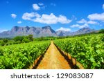 vineyards against awesome... | Shutterstock . vector #129083087
