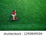 rear view of a happy asian kids.... | Shutterstock . vector #1290849034