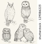 owl collection. set of funny... | Shutterstock .eps vector #129086225