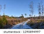 winding snowy dirt road through ... | Shutterstock . vector #1290894997