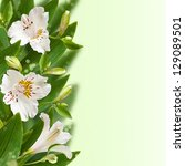 Beautiful white flowers with bokeh. Floral border. - stock photo