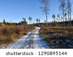 snowy gravel road through a... | Shutterstock . vector #1290895144