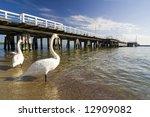 The Pier In City Sopot   Poland