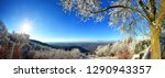 snowy landscape with panoramic... | Shutterstock . vector #1290943357