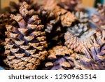 restaurant food from minas... | Shutterstock . vector #1290963514