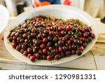 uzbek claret sweet cherry on a... | Shutterstock . vector #1290981331