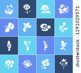 flora icon set and plumbago... | Shutterstock .eps vector #1291029571