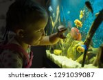 little girl child looks at the... | Shutterstock . vector #1291039087