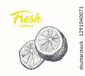 fresh lemons vector banner... | Shutterstock .eps vector #1291040071