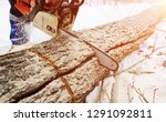 close up of woodcutter sawing... | Shutterstock . vector #1291092811