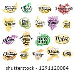 fruit isolated icons  lettering.... | Shutterstock .eps vector #1291120084