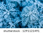 background  texture  leaves of... | Shutterstock . vector #1291121491