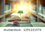 education concept with tree of... | Shutterstock . vector #1291221574