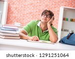 young student preparing for... | Shutterstock . vector #1291251064