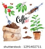 watercolor illustration set of... | Shutterstock . vector #1291402711