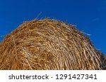 round stack of straw against... | Shutterstock . vector #1291427341