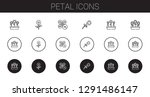 petal icons set. collection of... | Shutterstock .eps vector #1291486147
