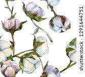 cotton floral botanical flower. ... | Shutterstock . vector #1291644751