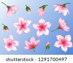 spring flower blossom vector...   Shutterstock .eps vector #1291700497