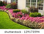 Flowerbed Of Colorful Flowers...