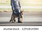 soldiers from the  k 9 unit...   Shutterstock . vector #1291814584