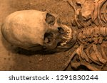 the skeleton of a man.... | Shutterstock . vector #1291830244