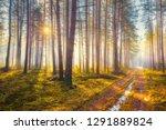 spring background. spring... | Shutterstock . vector #1291889824