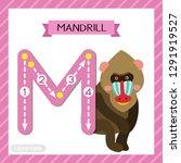 letter m uppercase cute... | Shutterstock .eps vector #1291919527