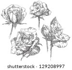 hand drawing flower | Shutterstock .eps vector #129208997
