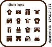 short icon set. 16 filled...   Shutterstock .eps vector #1292134981