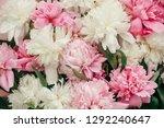 stylish peonies pattern  flat... | Shutterstock . vector #1292240647