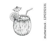 summer tropic fruit. exotic... | Shutterstock .eps vector #1292252131