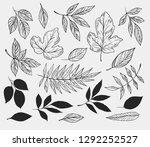 leaves set. hand drawn... | Shutterstock .eps vector #1292252527