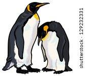 Emperor Penguins Aptenodytes...